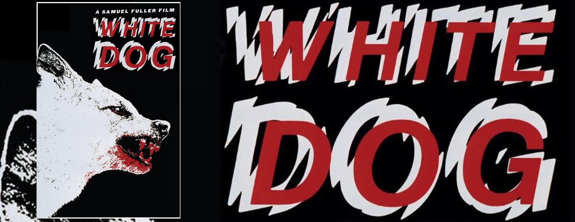 White Dog Header